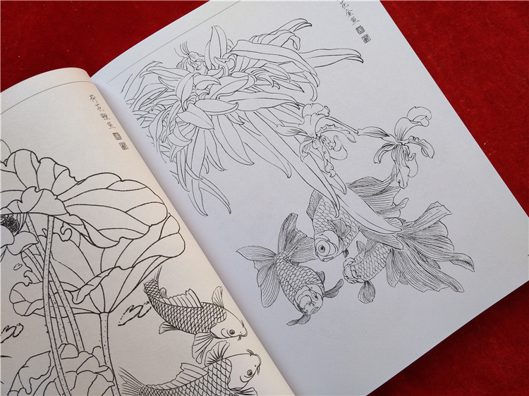 Image 4 - new Chinese painting line drawing book Color pencil Flower Birds and insect coloring book Engraving pattern for beginner-in Books from Office & School Supplies