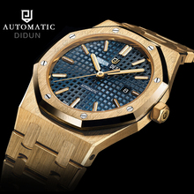 DIDUN Watches Men Luxury Brand Mechanical Automatic Watch Business Military Simple Male WristWatch Waterproof 30m Watch