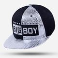 2017 New Fashion Snapback Cap For Man Women Baseball Cap Brand BIG BOY Hip Hop Rock Caps Hat Hats Sports For Boys/Girls gorras