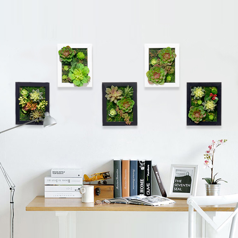 aliexpress   buy 3d creative metope succulent plants