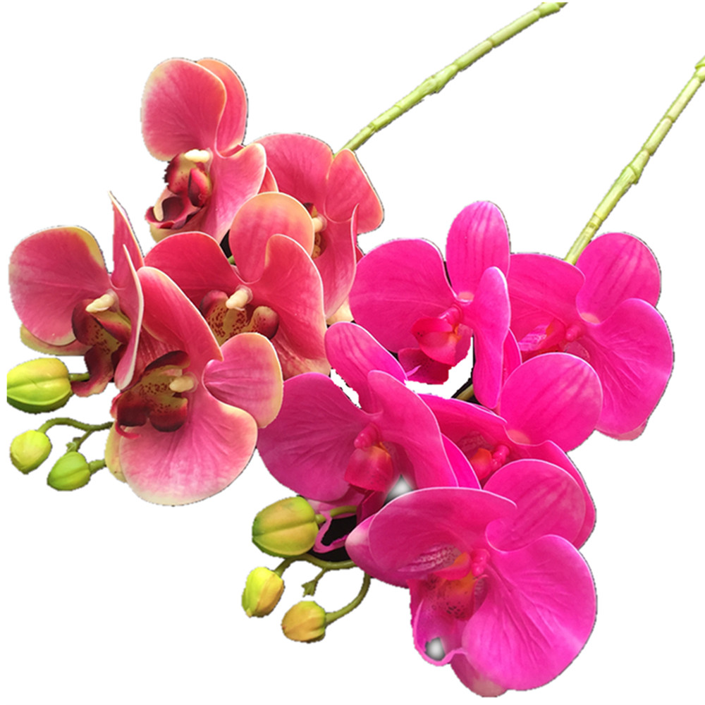 10p Real Touch Butterfly Orchid Flower Cymbidium PU 3D ...