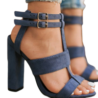 Thick Heel 10 5cm Summer Women S Sandals Female High Heels Women S Shoes Dress Sexy