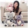 Горячие продажа 30 см высокое качество Милый коала плюшевые игрушки куклы медведь куклы гей/розовый/фиолетовый медведь коала игрушки для детской подарок на день рождения 1 шт.