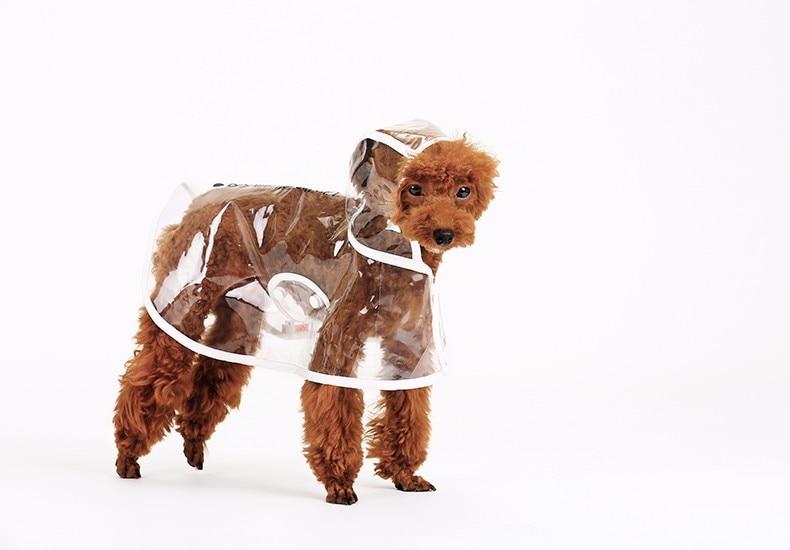 Transparent Waterproof Dog Rain Coat