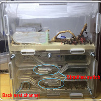 150mmx54mmx110mm Big DIY Moisture With Feeding Area Ant Nest ,Ant Farm Plastic, Insect Ant Nests Villa PET For House Ants