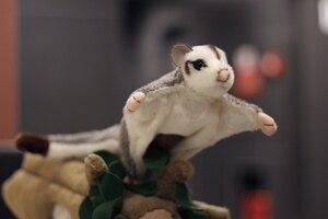 Реалистичный мягкий сахарный Glider, плюшевые игрушки длиной 21 см, милый Австралийский сахарный Glider, мягкие игрушки в виде животных, подарки дл...
