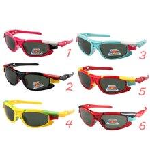 Polarized Goggles Sunglasses