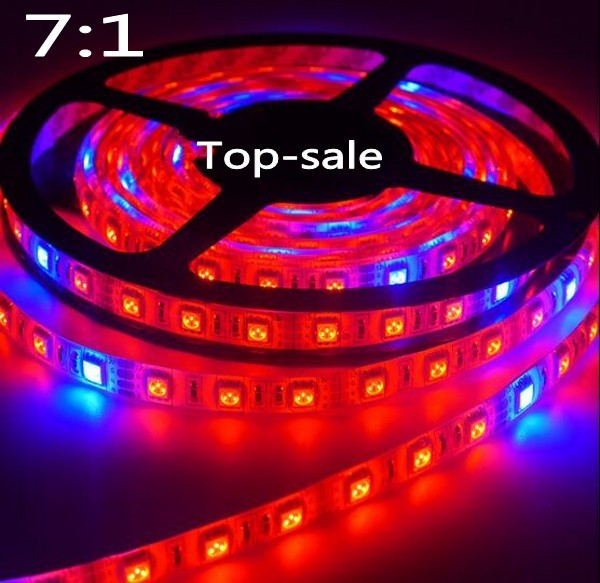 Led grow light dc12v waterproof growing led strip 5050 for led grow light dc12v waterproof growing led strip 5050 for aquarium greenhouse plant light in led grow lights from lights lighting on aliexpress aloadofball Gallery