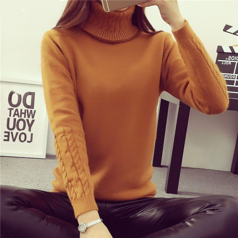 2016-Women-Sweaters-And-Pullovers-Hot-Sweater-Women-Winter-turtleneck-sweater-twisted-thickening-slim-pullover-sweater (3)