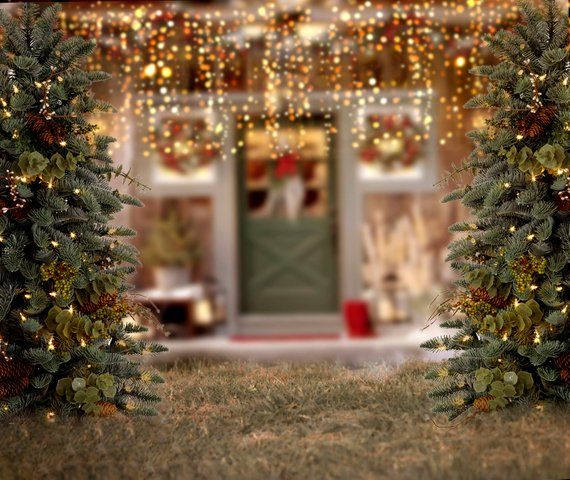 Christmas Tree Light Door Holiday Outdoor Coastal Patio Background   Computer Print Party Photo Backdrop