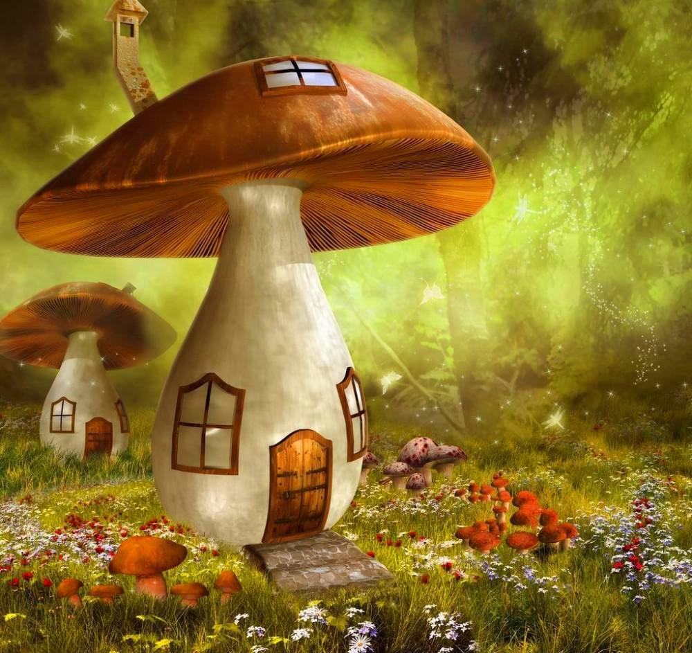 Diamond Painting Glowing Mushrooms Fairy Mushroom House Diamond ...