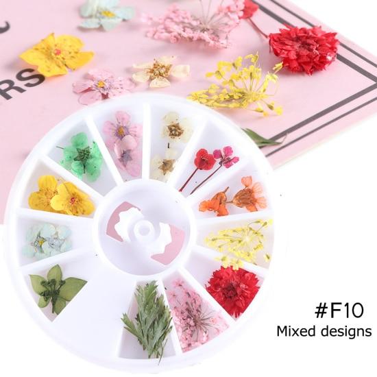 Сухоцветы лист ногтей украшения натуральный наклейка в виде цветка 3D сухой для маникюра ногтей наклейки ювелирные изделия УФ Гель-лак Маникюр TRFL-1 - Цвет: F10