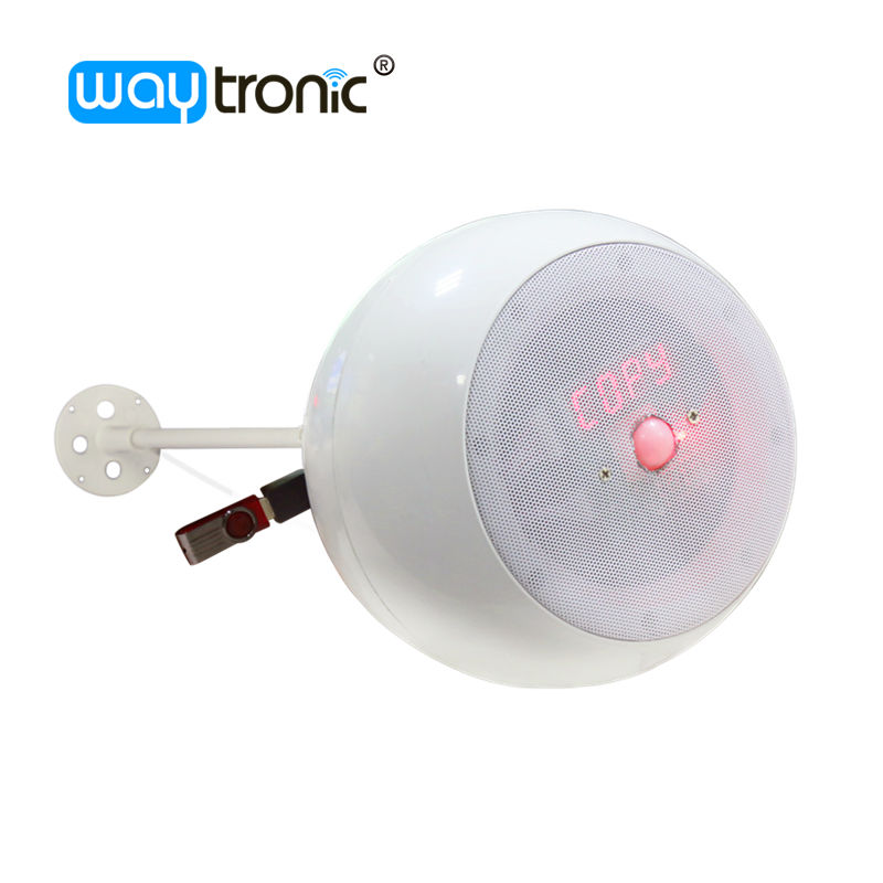 Pendant Ceiling Hanging Ball Speaker PIR Sensor Music Audio Player Timing Voice Broadcast With USB Connector
