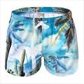 2016 летние Пляжные Шорты купальник раскол брюки сушки совместных Бермуды masculina для Marca досок для серфинга шорты мужчин Пляжные Шорты