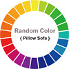 Random Color Pillow