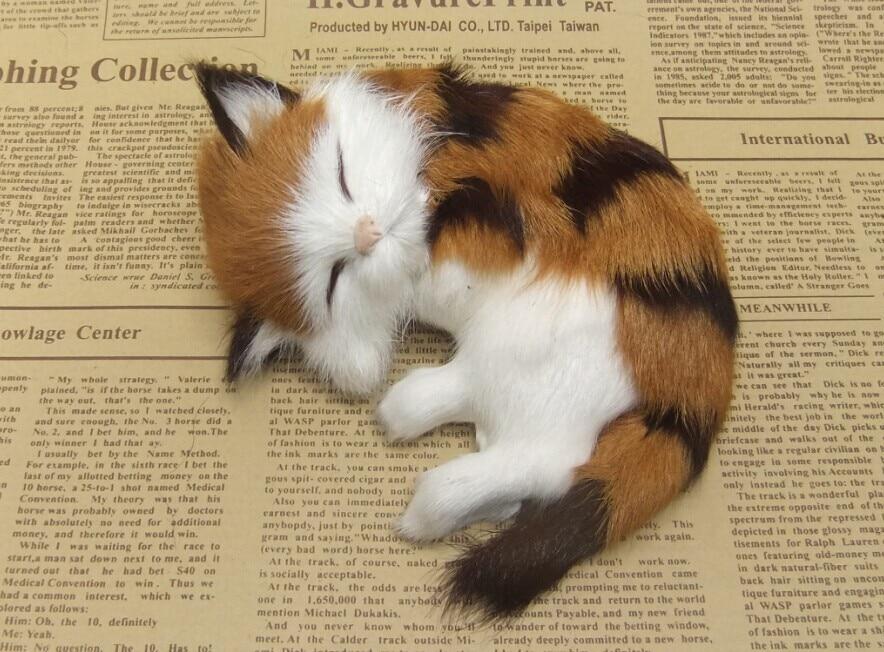 Štiri barvne neobvezna simulacija krzno živali mačka nap super - Dekor za dom - Fotografija 4