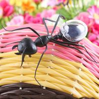 New Kids Solar Toys Power Energy Solar Ant Black Children Insect Bug Teaching Fun Gadget Toy