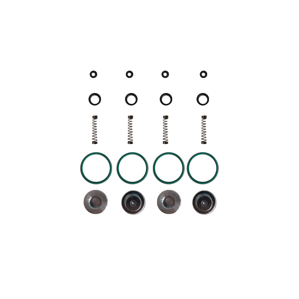 LPG CNG Kits For AEB Injector Rail Air Nozzle Spool Spring Repair Kit