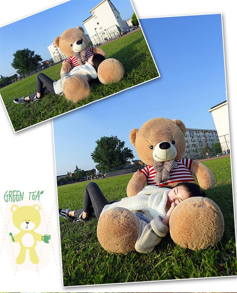 Bear-(13)_02