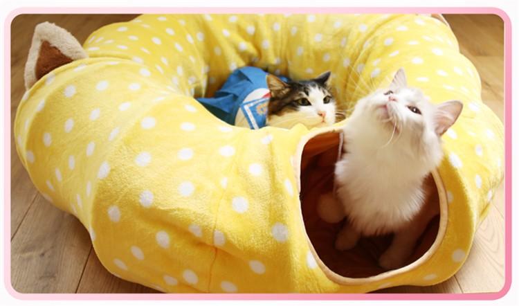 cat beds11