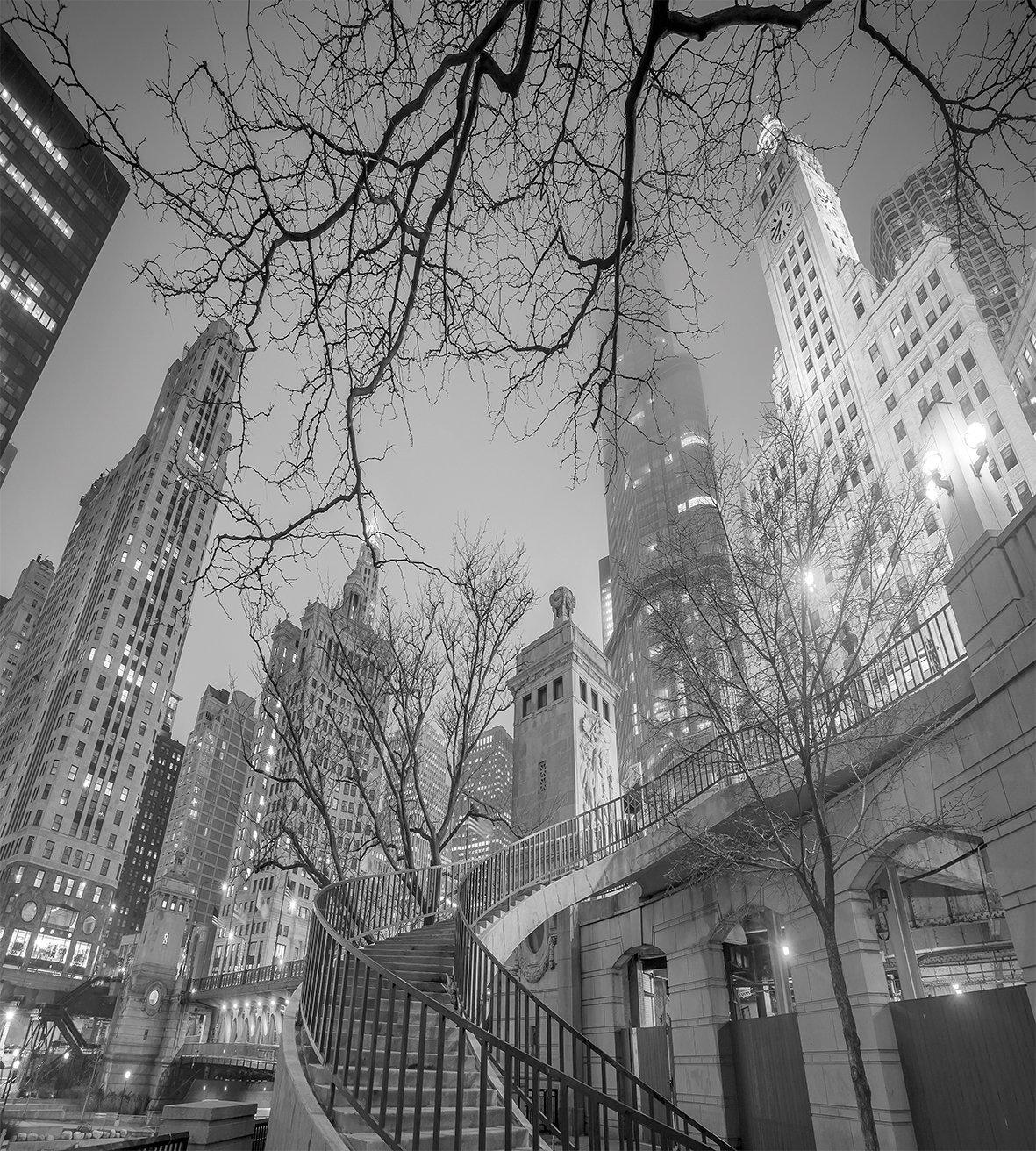 Черно белые украшения, набор пододеяльников для пуховых одеял, Чикаго, центр города, ночь, высотные здания, ветви деревьев, декоративный Комплект постельного белья из 4 предметов - 2