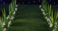 10m Lot Turf Capet 2 Meter Wide Wedding Greensward Carpet Wedding Carpet Runner Wedding Decoration Wedding