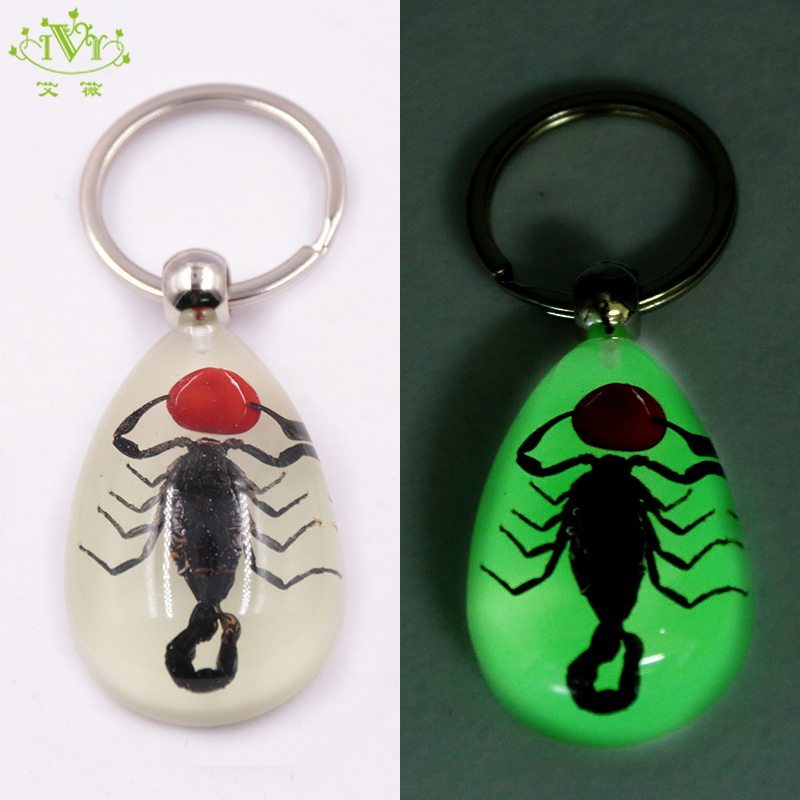 Real Black Scorpion Insect Key Ring GLOW IN THE DARK Specimen Block