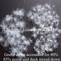 Free shipping 85% white goose down/duck down accounted for 20% &fill power 750 & bulk down 1 lb price paypal accepted