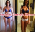 Dietary Supplement Garcinia Cambogia Extract 60% Hydroxy Citric Acid 500mg x 500caps slimming caps food free shipping