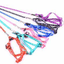 Arnés ajustable para mascota de perro de nailon, con correa de plomo, 10 colores a elegir, correa, collares de cadena, juguete interactivo