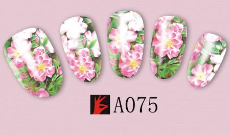 A075(1)