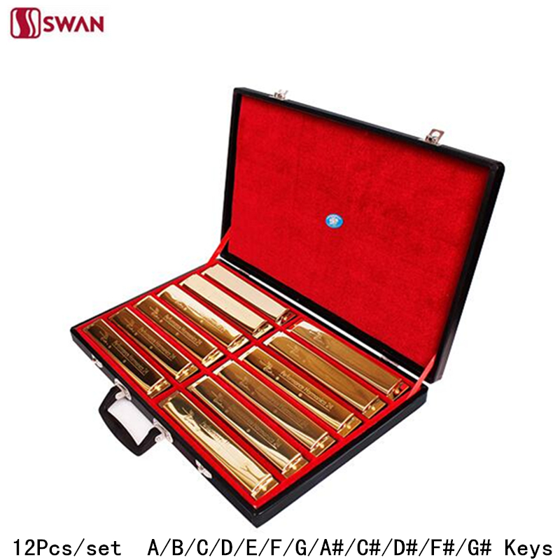 12Pcs/set Swan Harmonica 24 Hole 12- Tune set packing Golden color Tremolo Harp with Gift Box Mouth Organ for Collect Gaita 7pcs set swan 10 hole 20 tone harmonica senior diatonic blues harp 7 tune set mouth organ sliver color with gift box gaita