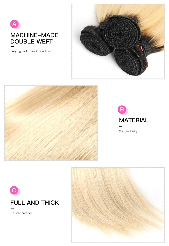 HTB19w8maPnuK1RkSmFPq6AuzFXaX Facebeauty 1B/613 Honey Blonde Brazilian Straight Remy Human Hair 3 Bundles with Lace Closure,Blonde Ombre Bundles with Closure