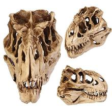 Resin Dinosaur Skull Fossil Teaching Skeleton Model Halloween Festival Decor