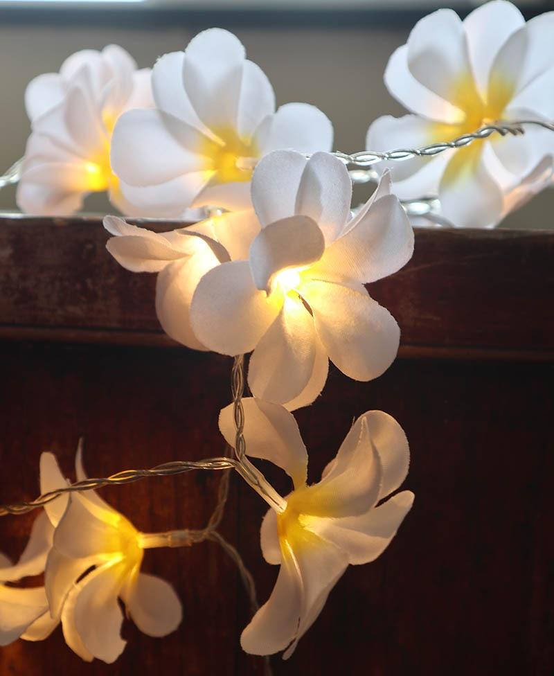 220 v 5 m 28led frangipani LED corda luzes bateria luz de fadas - Iluminação festiva - Foto 2