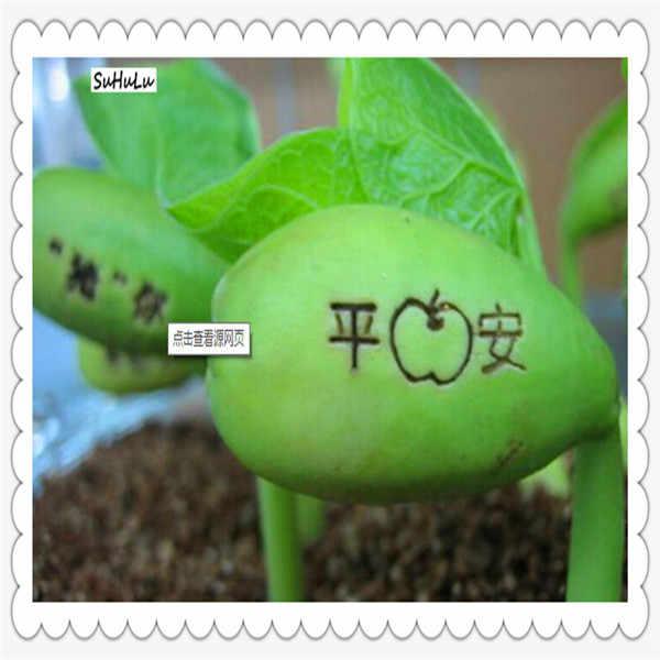 โปรโมชั่น! 5 pcs Magic ถั่ว Magic growth รูปแบบและคำไม้ยืนต้นดอกไม้ในร่มปีนเขา potted พืชปีใหม่ของขวัญ