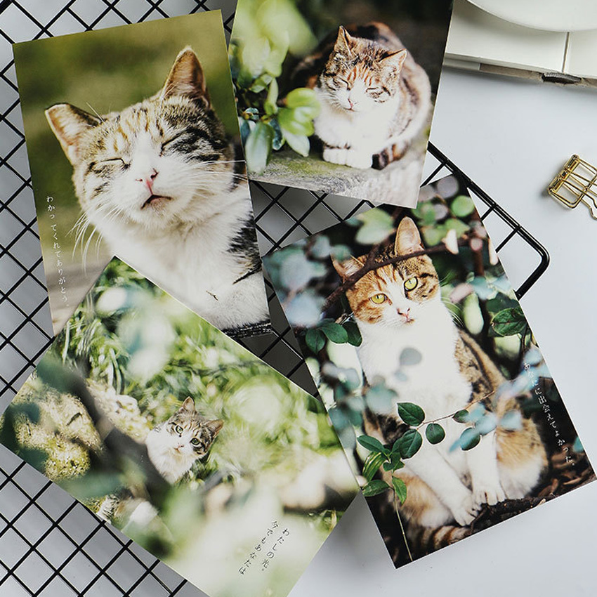 30 Pcs/lot Cute Cat Forest Postcard Greeting Card  Gift Birthday Card Message Card Creative DIY Gifts