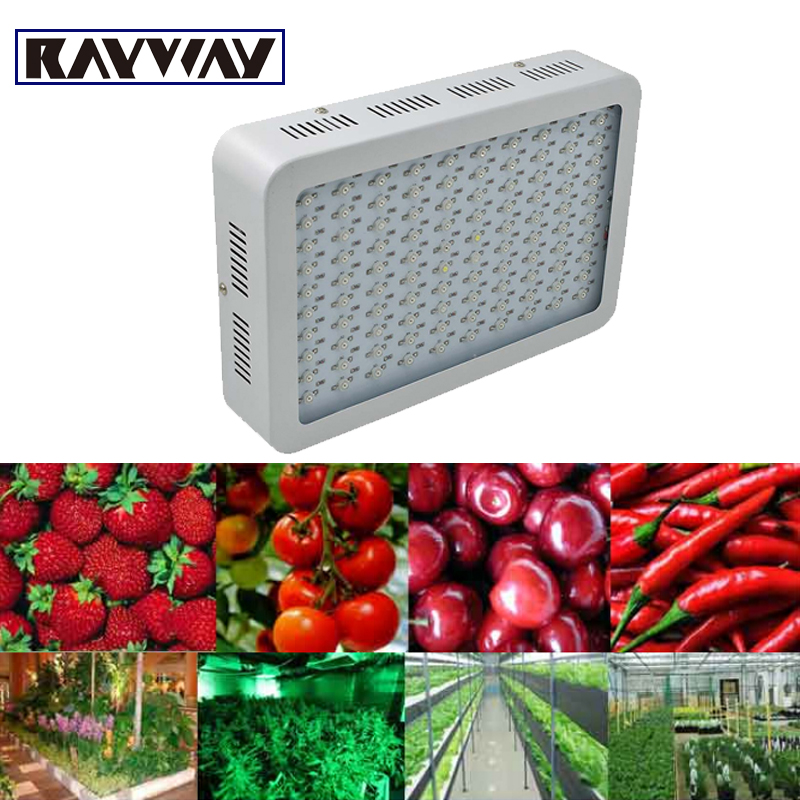RAYWAY full spectrum 300W Led Grow Light 100LEDs red blue white uv ir Grow lamp for Medicinal plant growth hydroponics flowering 7 band 8 band 200w cob led grow chip full spectrum red blue uv ir white led plant grow chip 2 channel output for hydroponics