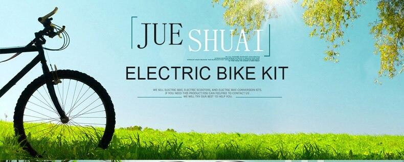 electric bike kit (1)