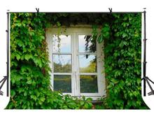 150x210cm Wooden Window Backdrop Green Vine Vintage Photography Background for Camera Photo Props