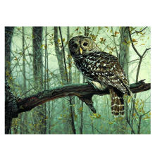 WONZOM Forest Owl DIY Painting By Numbers Animal Calligraphy Modern Wall Art Canvas For Home Decor 16*20 Inch