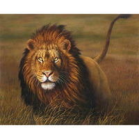 Frameless Lions Animals DIY Painting By Numbers Kits Acrylic Paint On Canvas Hand Painted Oil Painting