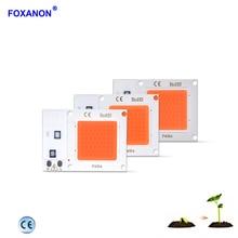 Foxanon led 램프 구슬 110 v 220 v cob 칩 phyto 램프 전체 스펙트럼 10 w 20 w 30 w led 다이오드 식물 실내 묘목에 대 한 조명을 성장