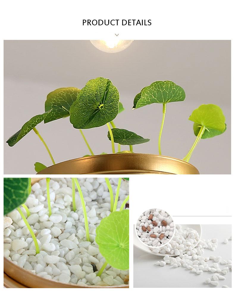 北欧餐厅灯简约创意个性吧台单头床头奶茶店服装店小吊灯植物灯具-tmall_10