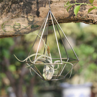 Air Plants Holder Pot Rustic Style Hollow Freestanding Hanging Metal Diamond Shaped Tillandsia Air Plant Rack