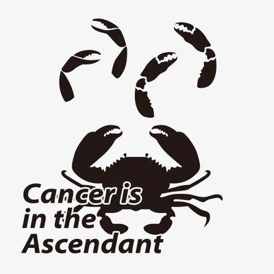 Ntt002 Pate De Tatouage Etanche Le Cancer Pince De Crabe Crabe Est