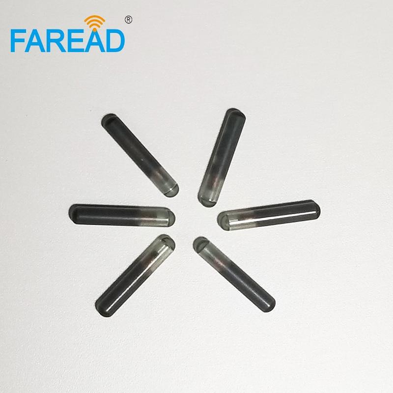 X60pcs ICAR Certificate International Standard 2.12*12mm Glass Tag FDX-B EM4305 Chip Veterinary Pet Fish Arowana Microchip