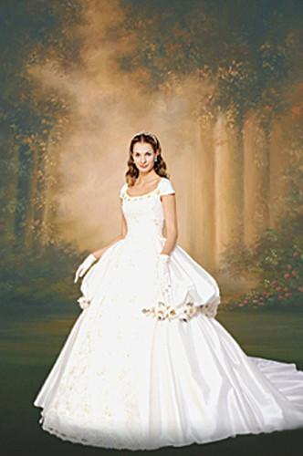10x20ft hand painted majestic sky scenic Muslin backdrops photography wedding,100% cotton portrait photo studio backgrounds