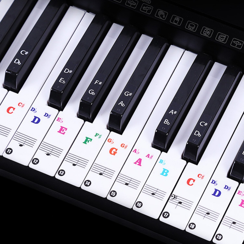 88/61 Key Color Piano Letter Notes Stickers Keyboard Hand Roll Piano Keyboard Transparent Stickers Notation Transparent