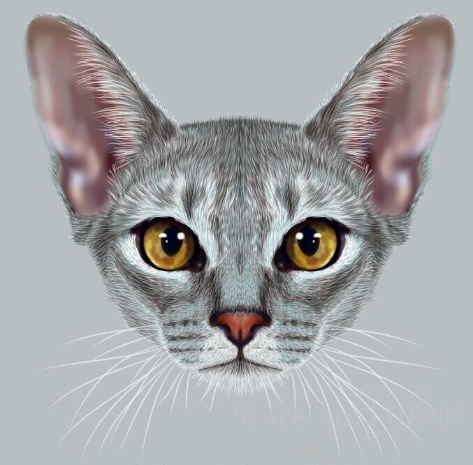5D Diy Pintura Diamante Punto de Cruz Cat Head 3D Diamond Mosaico - Artes, artesanía y costura